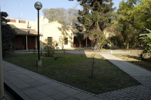 011 Patio Central